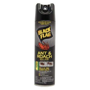 Insect Spray Hidden Safe