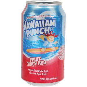 Punch Can Safe